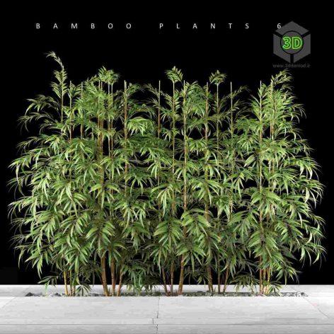Bamboo Plants floor(3ddanlod.ir) 146