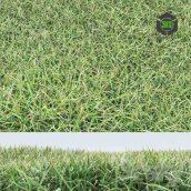 Grass(3ddanlod.ir) 020