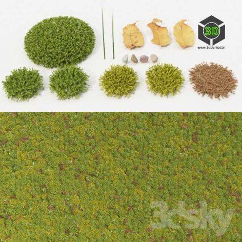 Moss Collection(3ddanlod.ir) 022