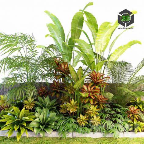 Palm Composition(3ddanlod.ir) 074