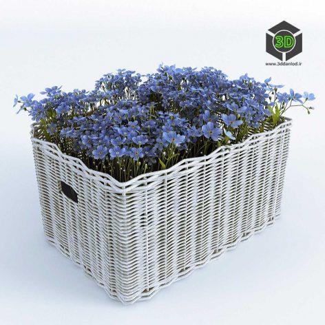 Basket with Forget Me(3ddanlod.ir) 004