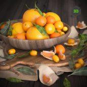 Oranges(3ddanlod.ir) 277
