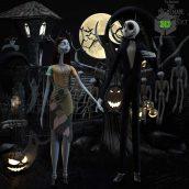 The Nightmare before Christmas Set Sally & Jack(3ddanlod.ir) 161