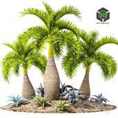 Tropical Garden(3ddanlod.ir) 055