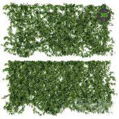 Wall of Ivy Leaves V2(3ddanlod.ir) 034