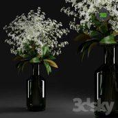 Gypsophila and Magnolia Leaves in Bottle(3ddanlod.ir) 171