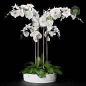 Orchid vase (3ddanlod.ir) 017