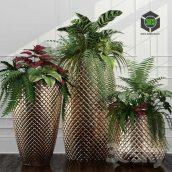 http://trainbit.com/files/6445710884/Room_Plants_11(3ddanlod.ir).rar