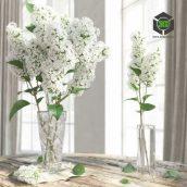 The Lilac white flower(3ddanlod.ir) 108