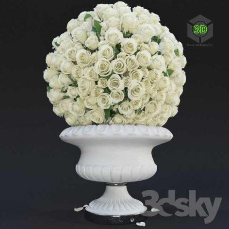 White Roses(3ddanlod.ir) 496