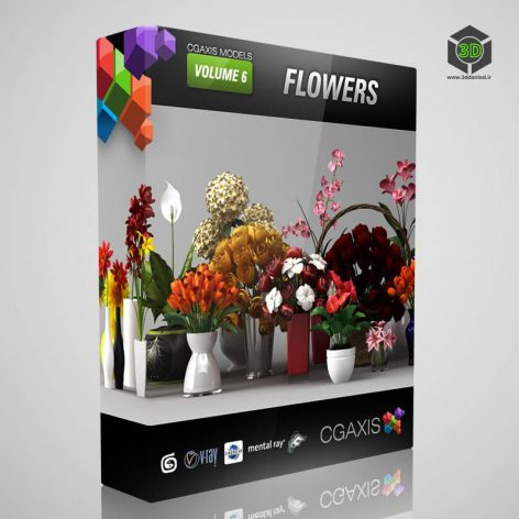 CGAxis.Models.Volume.6.Flowers cover (3ddanlod.ir)