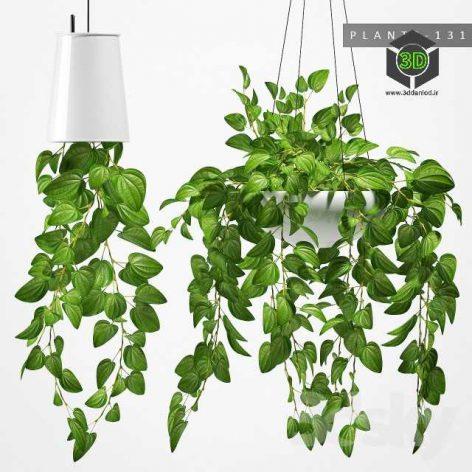 Plants 131(3ddanlod.ir) 384