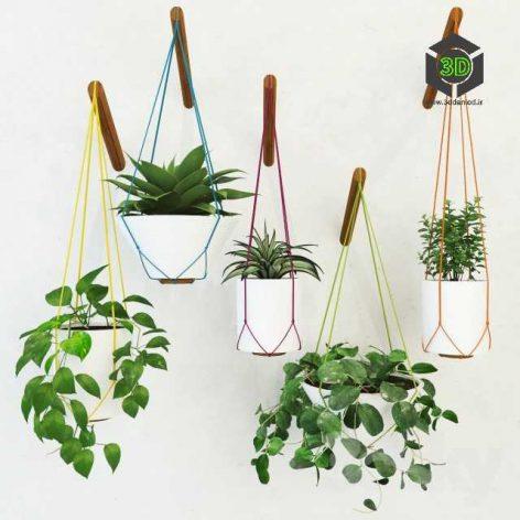 Pot Plant(3ddanlod.ir) 338