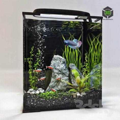 Aquarium 2(3ddanlod.ir) 124