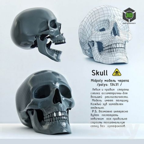 skull statue (3ddanlod.ir) 008