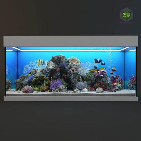Marine Aquarium(3ddanlod.ir) 2420