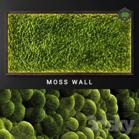 Moss Wall 2(3ddanlod.ir) 3688
