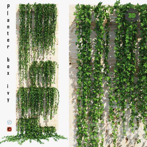 Planter Box Ivy(3ddanlod.ir) 3447