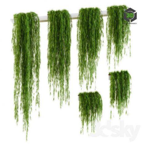 Plants for Shelves 6 Items(3ddanlod.ir) 3452