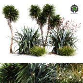 Oceania Plant Set(3ddanlod.ir) 2137