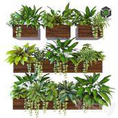 Plants on the Wall 2(3ddanlod.ir) 1764