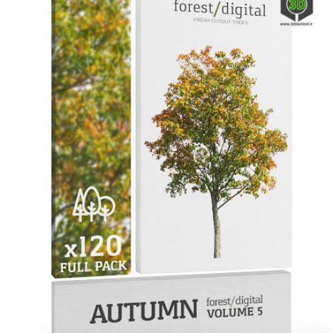 ForestDigital vol. 5 - Autumn trees - 120 Trees cover (3ddanlod.ir)