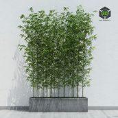 Bamboo 2(3ddanlod.ir)970