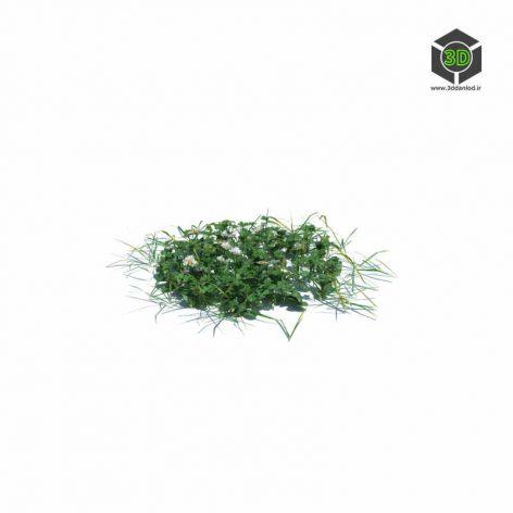 002_simple_grass_medium_v2 (3ddanlod.ir)
