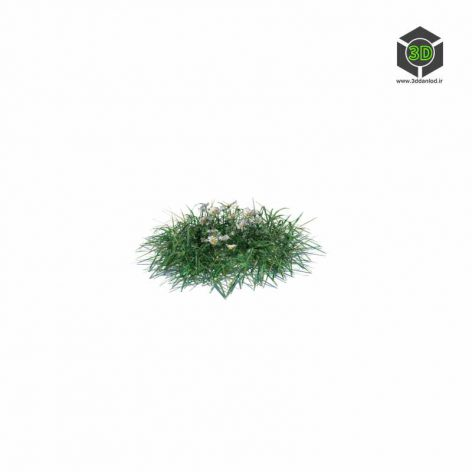 004_simple_grass_small_v1 (3ddanlod.ir)