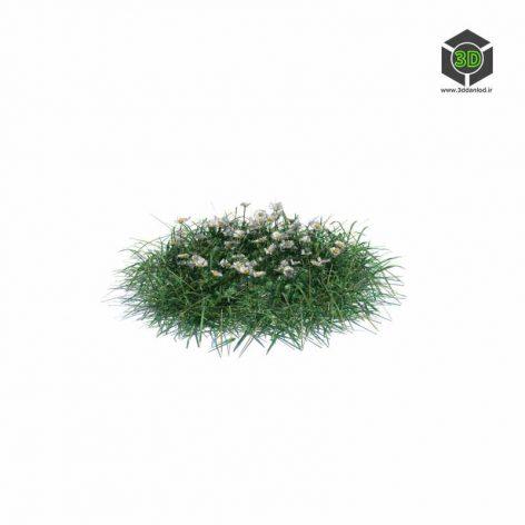 005_simple_grass_medium_v2 (3ddanlod.ir)