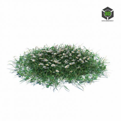 006_simple_grass_large_v3 (3ddanlod.ir)