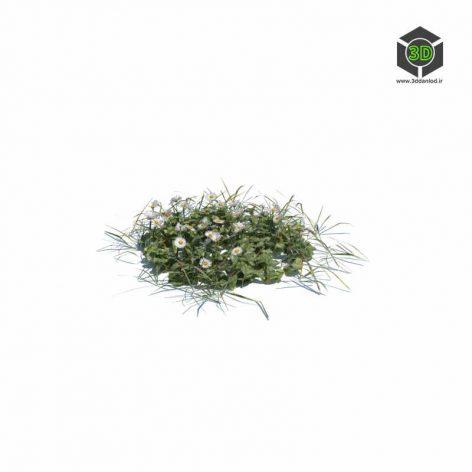 008_simple_grass_medium_v2 (3ddanlod.ir)