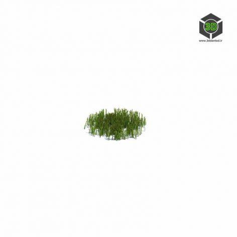 010_simple_grass_small_v1 (3ddanlod.ir)