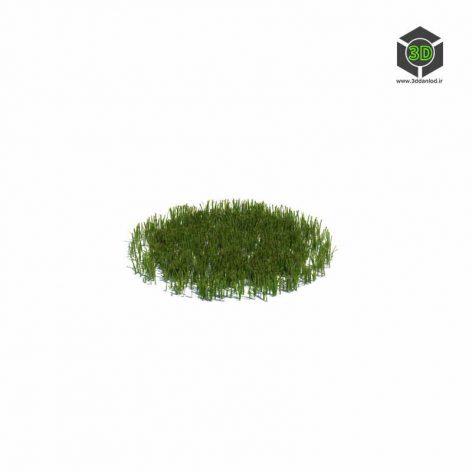 011_simple_grass_medium_v2 (3ddanlod.ir)