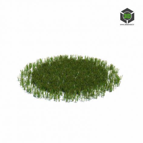 012_simple_grass_large_v3 (3ddanlod.ir)