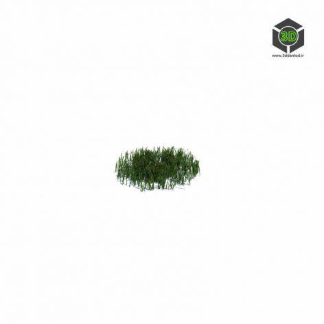 013_simple_grass_small_v1 (3ddanlod.ir)