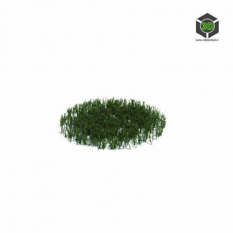 014_simple_grass_medium_v2 (3ddanlod.ir)