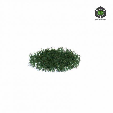 017_simple_grass_medium_v2 (3ddanlod.ir)