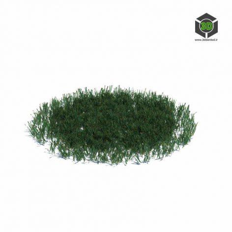 018_simple_grass_large_v3 (3ddanlod.ir)
