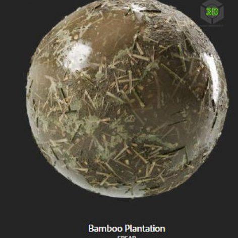 bamboo_plantation (3ddanlod.ir)