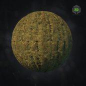 Archmats02_03_Sorbus aucuparia_bark (3ddanlod.ir)