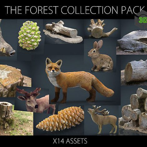Cubebrush - The Forest Collection Pack cover (3ddanlod.ir)