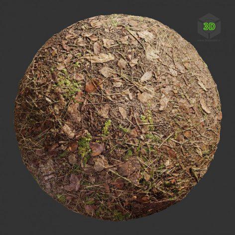 GroundDirtForest001 (3ddanlod.ir)
