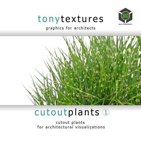 CutoutPlantsV01_CD-Label (3ddanlod.ir)