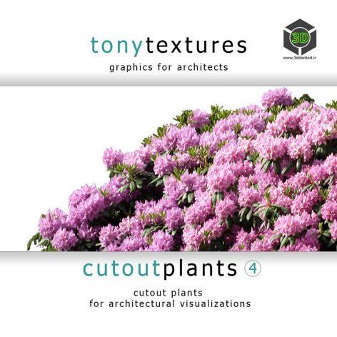 CutoutPlantsV04_CD-Label (3ddanlod.ir)