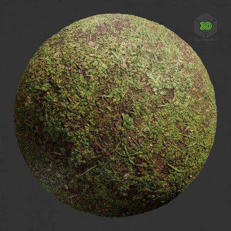 GroundDirtForest006 (3ddanlod.ir)