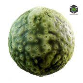 green_creature_skin_32_11_render (3ddanlod.ir)