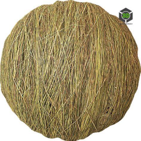 Grass_Dried_pjvx50_surface_Preview (3ddanlod.ir)