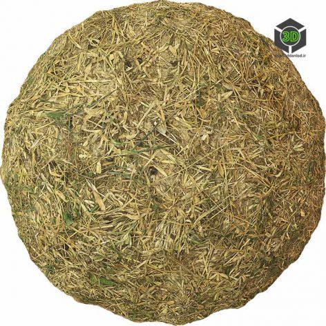 Grass_Dried_pjwfV0_surface_Preview (3ddanlod.ir)