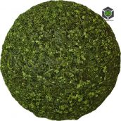 Grass_Uncut_oeeb70_surface_Preview (3ddanlod.ir)